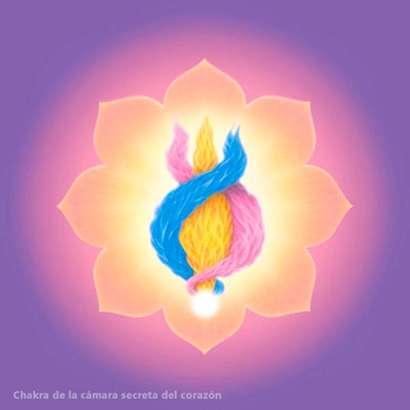 Chakra-camara-secreta-del-corazon